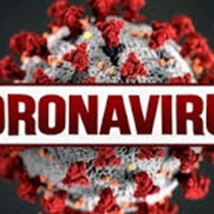 41 са новите случаи на коронавирус, в област Плевен – 1!