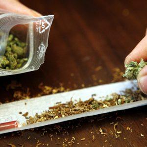 В Плевен задържаха 17-годишен с марихуана
