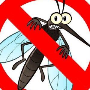 """Втора обработка срещу комари ще се извърши в Плевен и парк """"Кайлъка"""""""