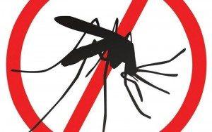 Обработваха срещу комари, по-късно и против кърлежи