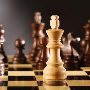 Общинско първенство по шахмат за мъже ще се проведе в Кнежа