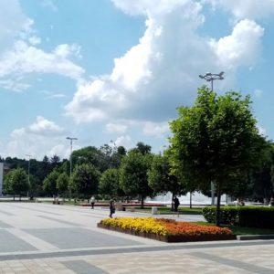 Увеличават се наетите на трудово или служебно правоотношение в област Плевен