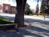 """Вандали къртят павета от площад """"Възраждане"""""""