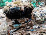 Италианските отпадъци в бургаското пристанище, предназначени за завод в Плевен, не са опасни или токсични