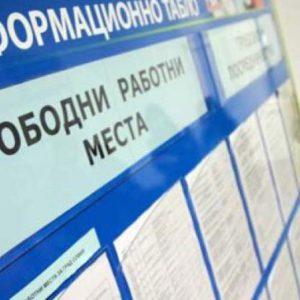 Обявени са близо 400 работни места чрез Бюрото по труда в Плевен
