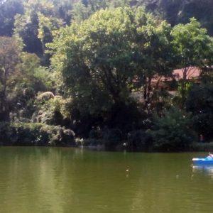 """Предложение за безвъзмездно предоставяне на ОбщинаПлевен на част от парк """"Кайлъка"""" ще разглеждат съветниците"""